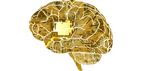 cyfrowy mózg